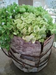 Emerald At Queensridge Enchanted Florist S Blog